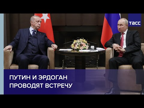 Путин и Эрдоган проводят встречу
