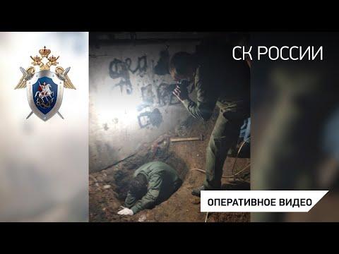 В Орловской области задержан подозреваемый в убийстве ранее пропавшей малолетней Виктории Гнедовой