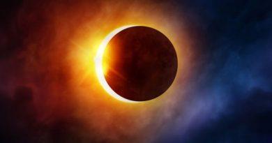 Солнечное затмение c суперлунием смогли наблюдать только пингвины